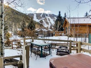 Private hot tub, mountain views, and pet-friendly lodge!, Ketchum