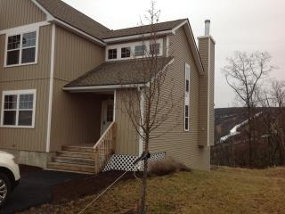Brand new luxury home with spectacular views, Tannersville