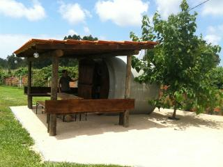Quinta SaConde Sefcatering house with car included!!, Vagos