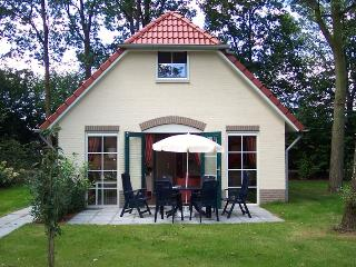 Luxury Wellness Cottage with Sauna - Overijssel vacation rentals