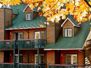 1 Bd Condo (sleeps 4) at the heart of best skiing!, Mont Tremblant