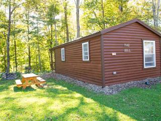 Tug Hill Lodge, One-bedroom Cabin, Taberg