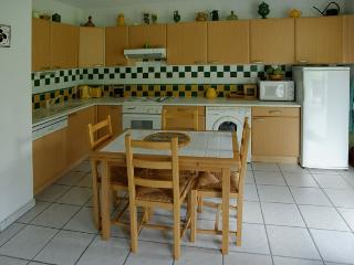 Pyrénees : Beautiful 2 bedrooms duplex center of c, Loudenvielle