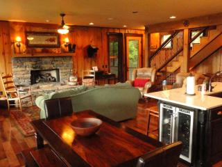 3 Bear Lodge - What a view! - Lake Nantahala vacation rentals