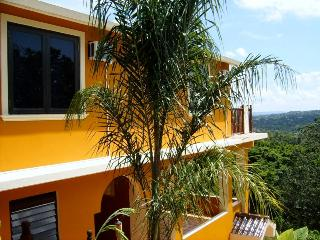 Luxury 2 Bedroom Oceanview Villa, Rincon