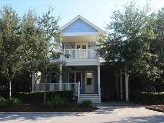 Blue Bird Beach House - Seagrove Beach vacation rentals