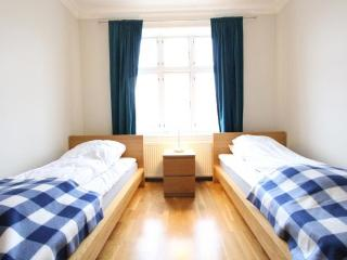 Very Nice Business Apartment in Copenhagen - Copenhagen vacation rentals