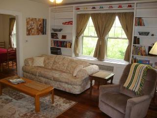 Pet Friendly, Fenced Yard, Sunny and Bright! Wi-Fi and Screened Porch., Asheville