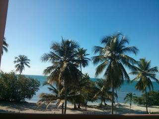 Beachfront 1 bedroom apartment with amazing view., Cabo Rojo