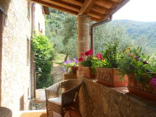 House in Camaiore: culture, food and wine vacation