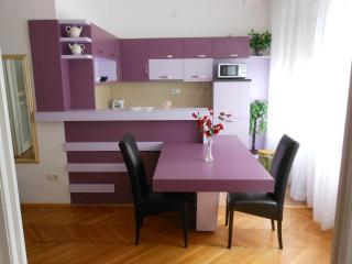 Comfortable apartment in Belgrade