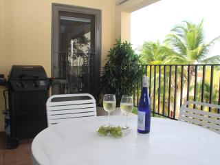 Executive Palmas Del Mar Resort villa near the Beach, Humacao