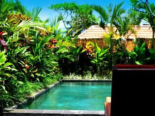 Romi Villa... Get Comfortably Lost in Ricefields, Canggu