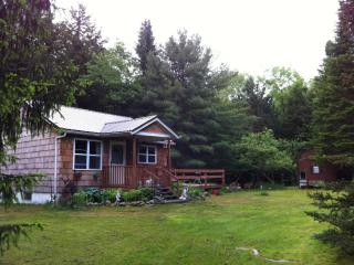 Catskills Mid-Century Modern Cottage - FABulous!, Livingston Manor