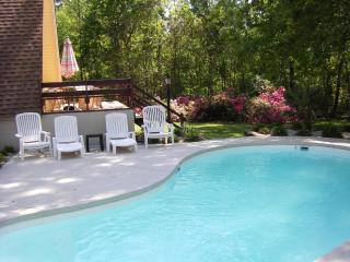 Lake Marion Waterfront House w/ Dock, Private Pool, Vance
