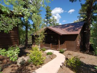 Torreon Cabin with Huge Private Deck, Sleeps 7, FREE WiFi, Show Low