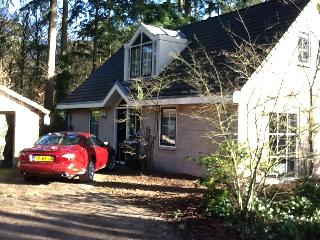 Nice, comfortable recreational villa in a wooded area for rent, Harderwijk