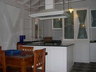 Prestige apartment - Veneto - Venice vacation rentals