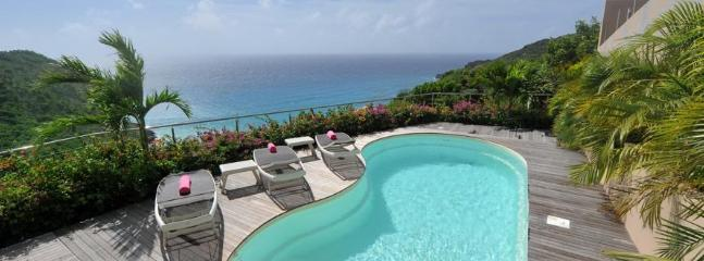 Stunning 3 Bedroom with Private Pool overlooking the Beach of Gouverneur