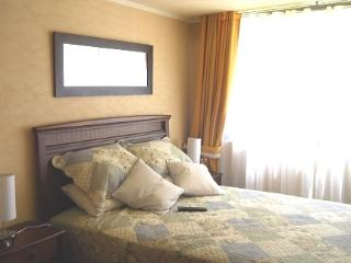 Apartment, steps from the subway and tourist attractions., Santiago