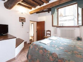 Apartment in the heart of Siena - Florence vacation rentals