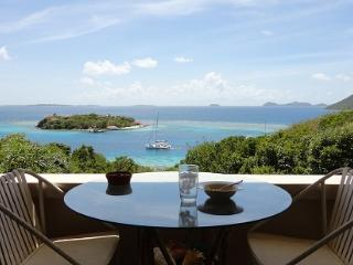 The Villa Oasis with a Boat on Great Camanoe Is. - British Virgin Islands vacation rentals