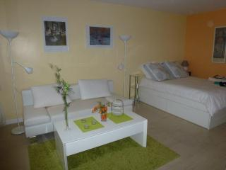 Great Bright Apartment Fully Equipped Wifi, Paris