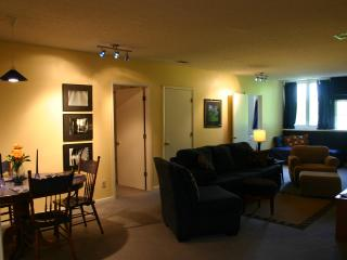 Penthouse Apartment - Louisville vacation rentals