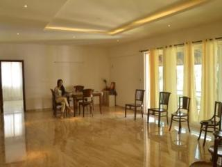 Fully furnished luxury Apartment in N Bangalore