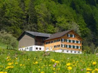 Haus Ebne ~ RA8124 - Hittisau vacation rentals