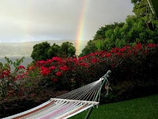 The best view on historic Lake Arenal, Costa Rica!, Nuevo Arenal