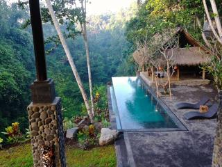 Stunning River View at Alami Villa with Staff, Ubud