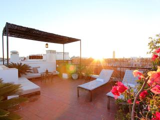Quevedo Terrace. 1-bedroom, 2 terraces - Seville vacation rentals