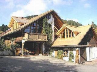 LLAG Luxury Vacation Apartment in Feldberg - 861 sqft, bright, comfortable, friendly (# 4963), Neuglashütten