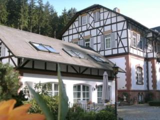 Vacation Apartment in Eisenach - 1076 sqft, exclusive, comfortable, generous. (# 4973), Ruhla