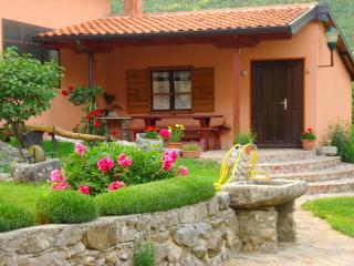 Istrian Museum Apartment in Roč - the smallest town in the world, Roc