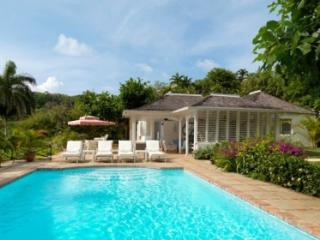 3 Bedroom Villa with Private Pool in Round Hill, Hopewell