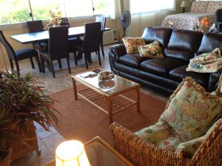 Fully remodeled, large condo steps from beaches, Kihei