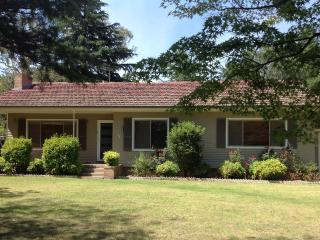 Bellevue Cottage 4 Bedrooms opposite UNE Armidale - New South Wales vacation rentals