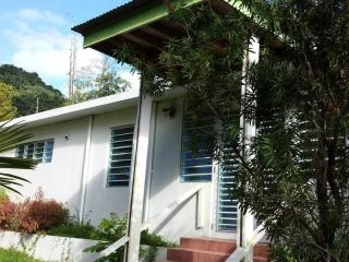 Modern, Private & Lush Rainforest Home #5 Sleeps 4 - Naguabo vacation rentals