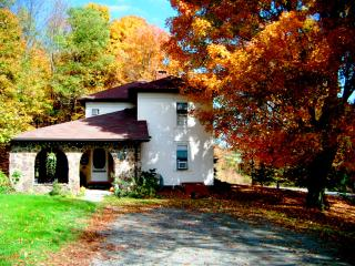 Stone Mountain Inn on Keene Summit - Pennsylvania vacation rentals