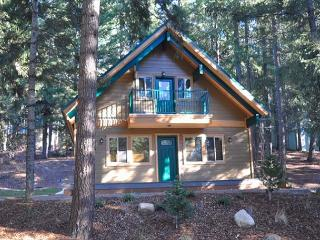Charming 3BR / 2BA cabin in Pineloch Sun, near the Lake and Speelyi Beac! - Ronald vacation rentals