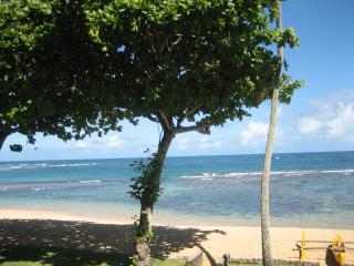 Tropical Beachfront Oasis 1 bedroom 2 bath (Brand new kitchen (granite counter tops, stainless steel appliances, Haleiwa