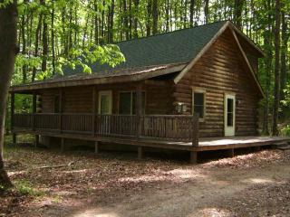 Cozy Cabin Home nestled in the woods but close to everything, Bellaire
