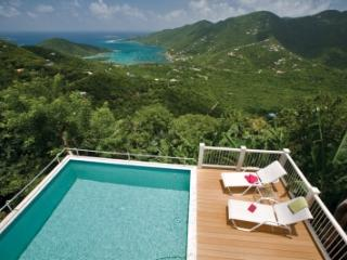 Beautiful 4 Bedroom Villa with Private Pool in Majestic Mile, St. John