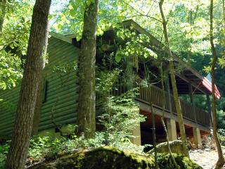 Riverfront Log Cabin - Private Waterfall and Scenic Nature Views, Millers Creek