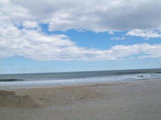 SUMMER RENTAL * OCEAN BLOCK * PARKING IN YARD - Seaside Heights vacation rentals