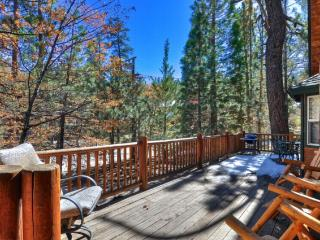 #45 Sinatra's Villa - Big Bear Lake vacation rentals