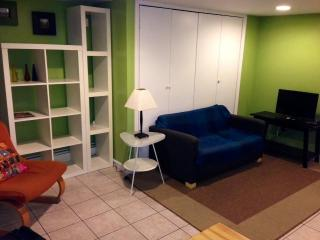 ***Convenient Furnished 1 Bedroom Apartment in Downtown Jersey City***