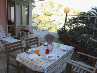 Lovely Apt with Terrace Sea Views.Portovenere - Portovenere vacation rentals